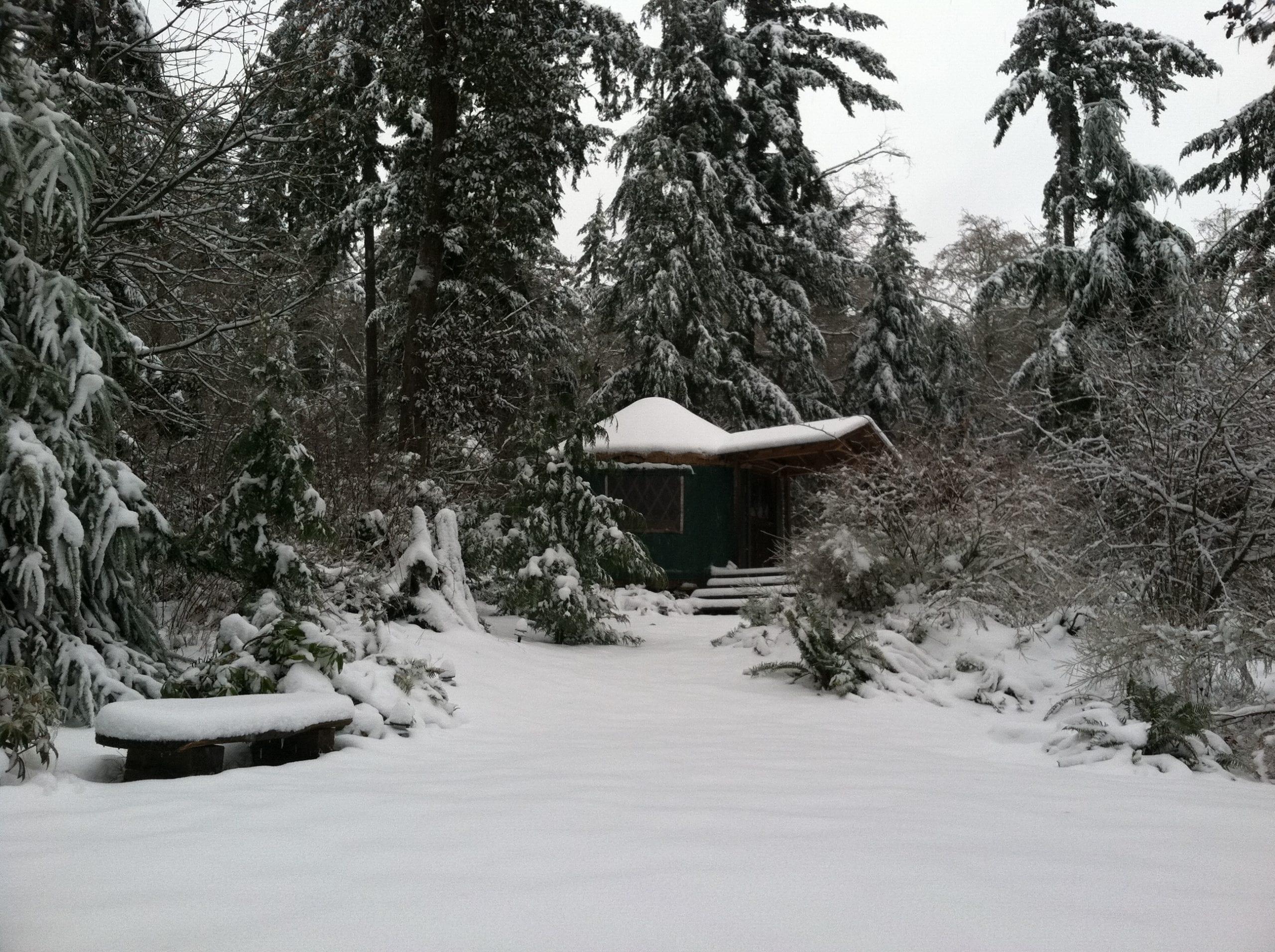 Oli Yurt 2